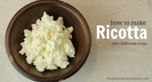 How To Make Fresh Ricotta Cheese (2 Ways!)