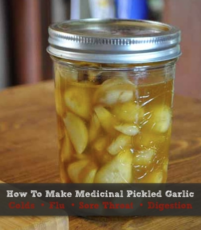 How-To-Make-Medicinal-Pickled-Garlic