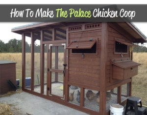 How To Make The Palace Backyard Chicken Coop