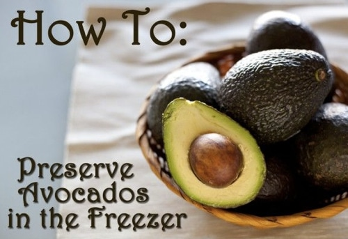 How-To-Preserve-Avocados-In-The-Freezer