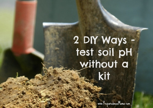 How To Test Soil pH Without A Kit Homestead amp Survival