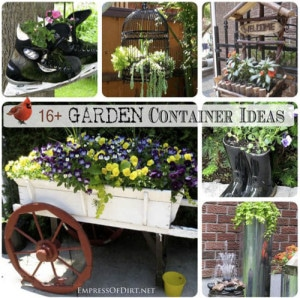 16+ Garden Container Ideas