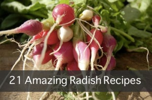 21 Amazing Radish Recipes