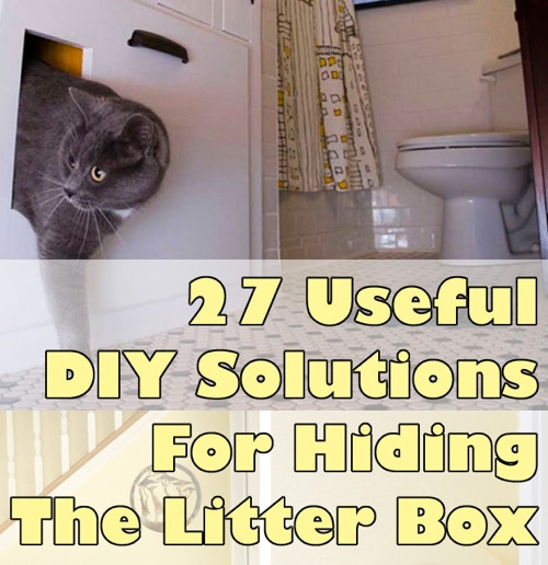 27-Useful-DIy-Solutions-For-Hiding-The-Litter-Box
