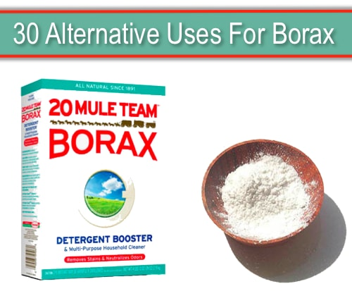 30-Alternative-Uses-For-Borax