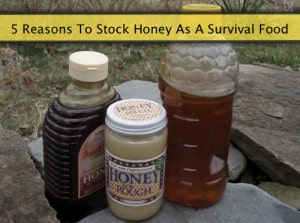 5 Reasons To Stock Honey As A Survival Food