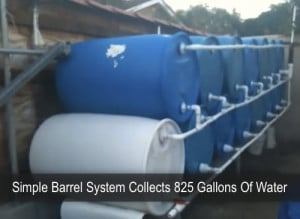 Simple Barrel System Collects 825 Gallons Of Water