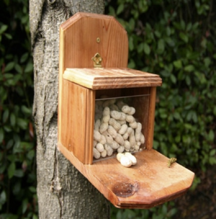 10 Best Diy Squirrel Feeders Amp Speciality Homestead