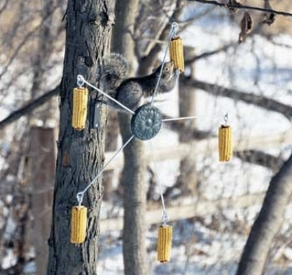 10_best_diy_squirrel_feeders_13