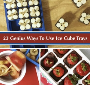 23 Genius Ways To Use An Ice Cube Tray
