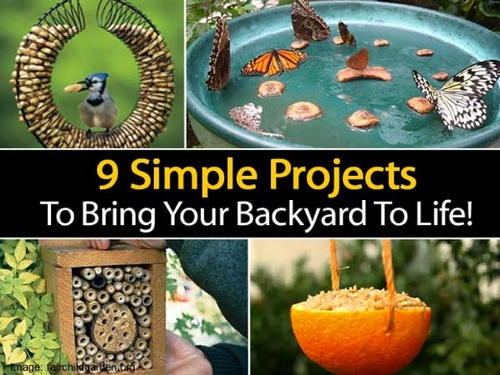9 Simple Projects To Bring Your Backyard To Life