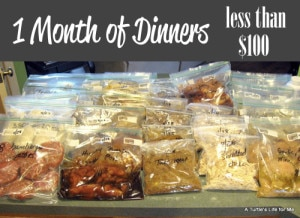 Dinners On A Budget – One Month Of Dinners For Less Than $100