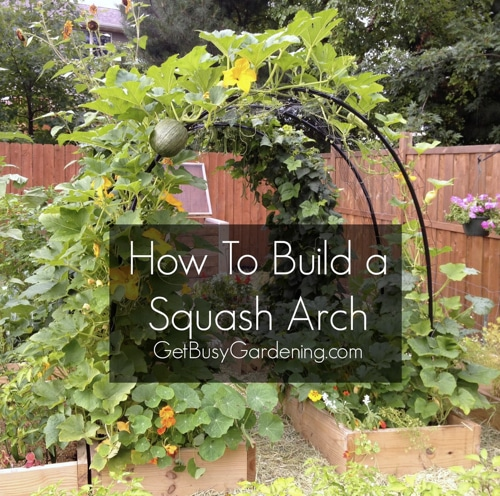 How-To-Build-A-Squash-Arch
