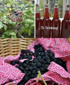 How To Make Blackberry Cider