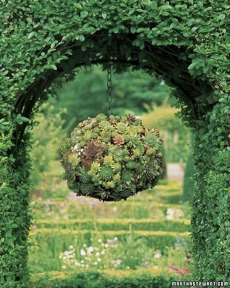 How To Make Hanging Succulent Topiary Balls