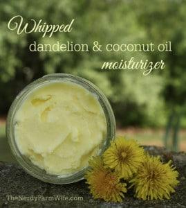 Whipped Dandelion & Coconut Oil Skin Moisturizer