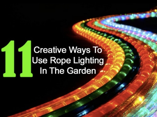 11-Creative-Ways-To-Use-Rope-Lighting-In-The-Garden