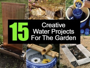 15 Creative Water Garden Ideas