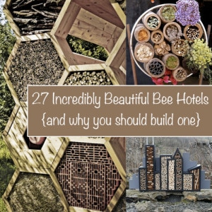 27 Incredibly Beautiful Bee Hotels (And Why You Should Build One!)