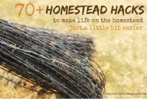 70+ Homestead Hacks: Nifty Shortcuts To Make Your Life Easier