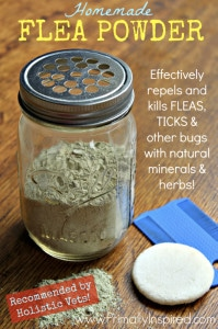 Homemade Flea Powder For Dogs
