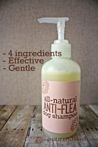 How To Make Homemade Anti-Flea Dog Shampoo
