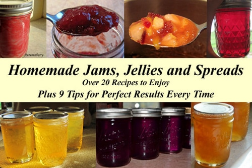 20+ Recipes of Homemade Jams, Jellies And Spreads
