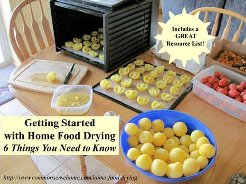 Getting-Started-With-Home-Food-Drying
