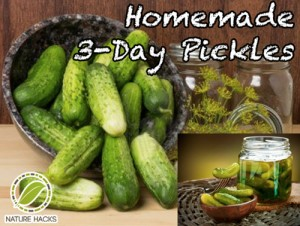 How To Make 3-Day Pickles