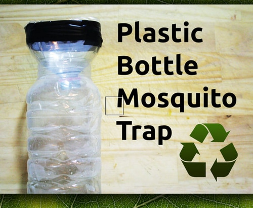 How-To-Make-A-DIY-Plastic-Bottle-Mosquito-Trap
