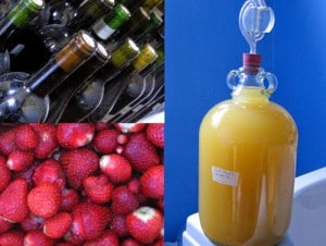 How To Make Wine From Fruit, Flowers & Veggies