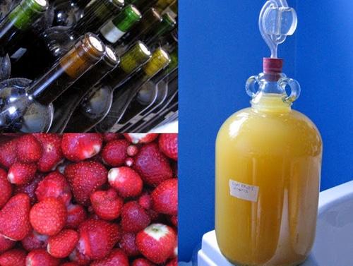 How-To-Make-Wine-Fruit-Wines-Flower-Wines-Vegetable-Wines