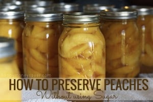 How To Preserve Peaches Without Using Sugar