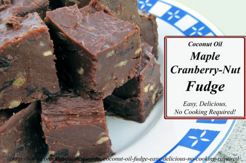 No-Cook Coconut Oil Fudge