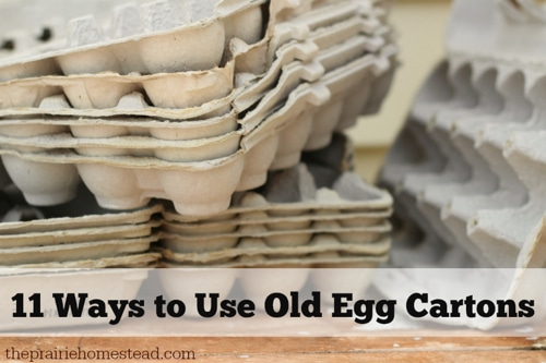 11-Creative-Ways-To-Use-Old-Egg-Cartons