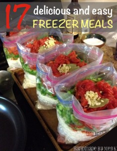 17 Delicious And Easy Freezer Meals