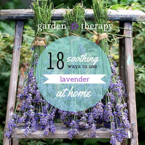 18-Soothing-Ways-To-Use-Lavender-At-Home