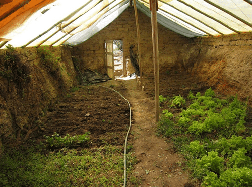 $300-Underground-Greenhouse-For-Year-Round-Gardening