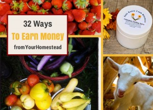 32 Ways To Earn Money For Your Homestead