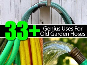 33+ Genius Uses For Old Garden Hoses