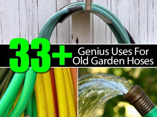 33-Genius-Uses-For-Old-Garden-Hoses