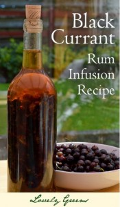 Black Currant Rum Infusion Recipe