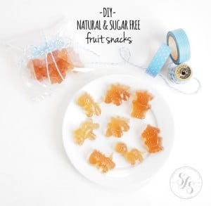 DIY Natural Sugar-Free Fruit Snacks