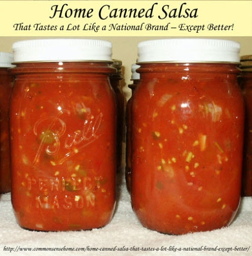 Home-Canned-Salsa-That-Tastes-A-Lot-Like-A-National-Brand-Except-Better!