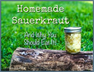Homemade Sauerkraut Recipe & The Health Benefits
