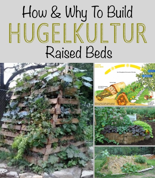 How-And-Why-To-Build-Hugelkultur-Raised-Beds 111