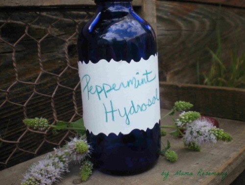 How-To-Make-A-Hydrosol