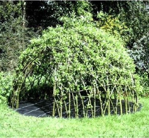 How-To-Make-A-Willow-Den