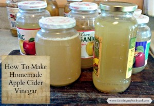 How To Make Homemade Apple Cider Vinegar