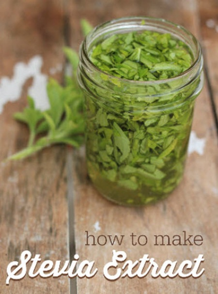 How-To-Make-Stevia-Extract-At-Home